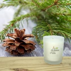 Petite Bougie Parfumée SAPIN des Vosges