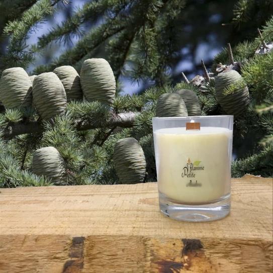 Bougie Mèche Bois Parfumée CÉDRE du LIBAN