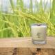 Bougie Mèche Bois Parfumée Poudre de riz