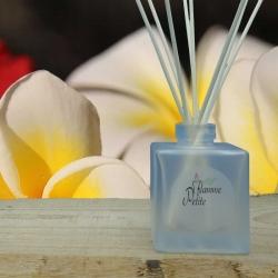 Diffuseur de Parfum MONOÏ